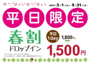 平日限定春割ドロップイン1,500円